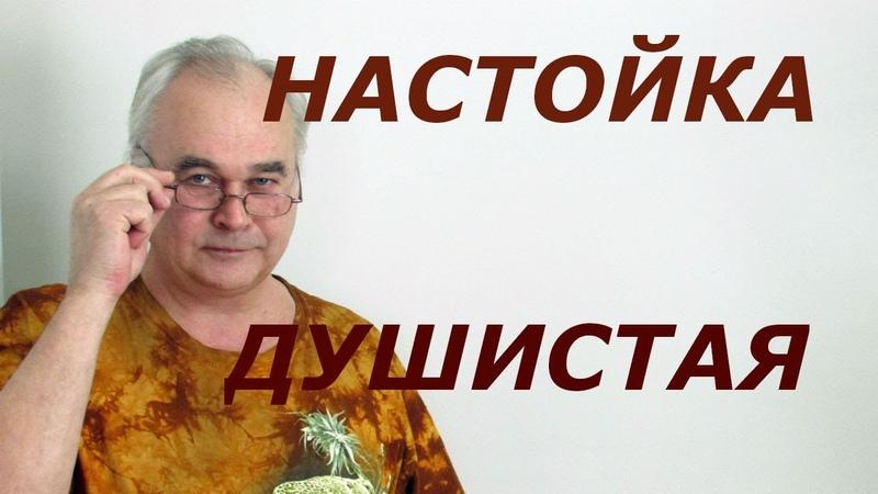 Настойка на водке Душистая Рецепты настоек СамогонСаныч