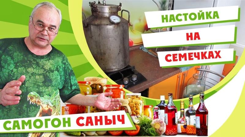 Настойка на семечках Рецепты настоек Самогон Саныч