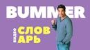 2 BUMMER Английский видео словарь