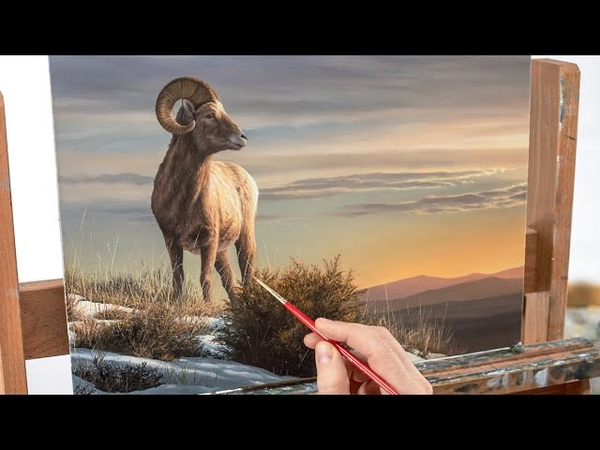 REALISTIC PAINTING - FUR TECHNIQUES, GRASS AND FOLIAGE, GLOWING SKY, BIGHORN SHEEP
