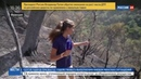 Новости на Россия 24 • На юге Франции из-за засухи выгорели сотни гектаров леса