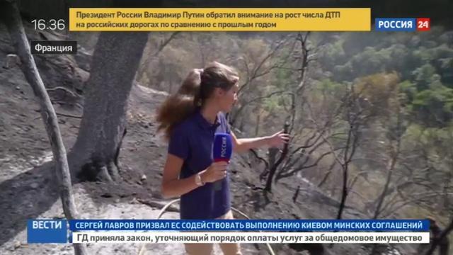 Новости на Россия 24 • На юге Франции из за засухи выгорели сотни гектаров леса