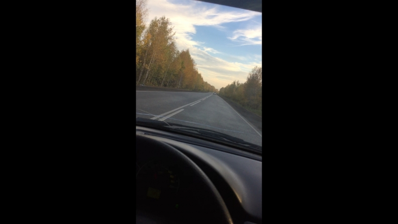 Дорога в осень ❗️