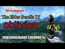 TES 4 Oblivion 36. Пора заняться Черным лесом!