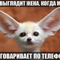 Анкета Константин Иванов