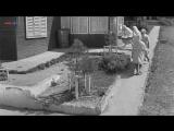Добро пожаловать или Посторонним вход воспрещен (1964)