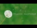 Симбионты Кутушова от компании Родник Здоровья РОЗ