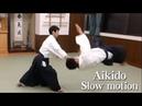 【合気道】Shirakawa Ryuji sensei - Slow motion Aikido 01