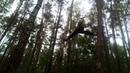 An exercise between the trees un ejercio entre arboles