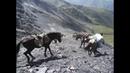 Вершины главного кавказского хребта
