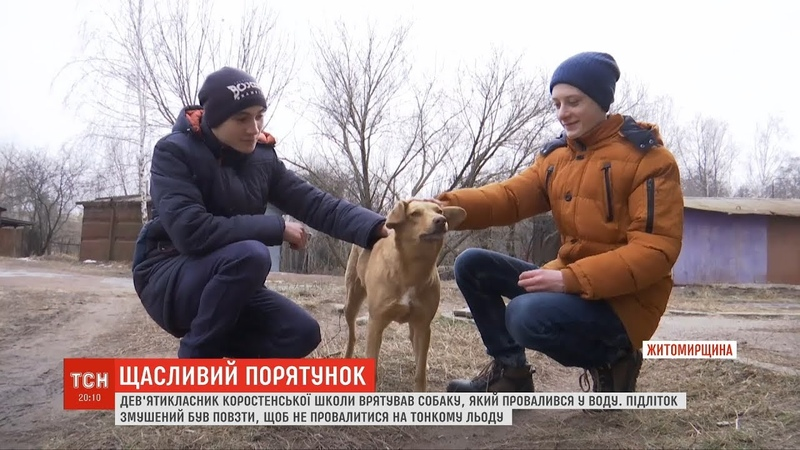 У Житомирі підліток врятував собаку, який провалився під лід