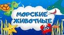Загадки про морских животных для детей Обитатели моря