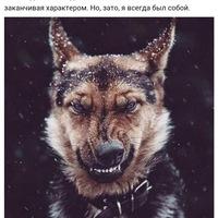 Анкета Beha Mahmadov