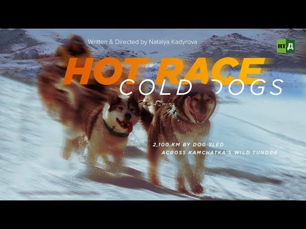 Hot Race, Cold Dogs 2,100 km by dog sled across Kamchatka's wild tundra