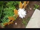Video-2013-07-10-12-38-24