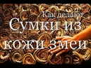 Как из кожи змеи делают сумки и туфли How is making bags and snake leather shoes