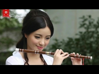 Beautiful Chinese music Instrument Endlesslove 10 different songs