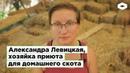 Александра Левицкая, хозяйка приюта для домашнего скота «Уголёк» | ROMB