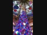 Видео Французский песня и музыка