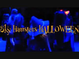 Sky Hamsters Halloween