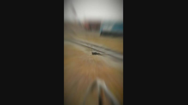 Дизель поезд ждём 😂😊😊