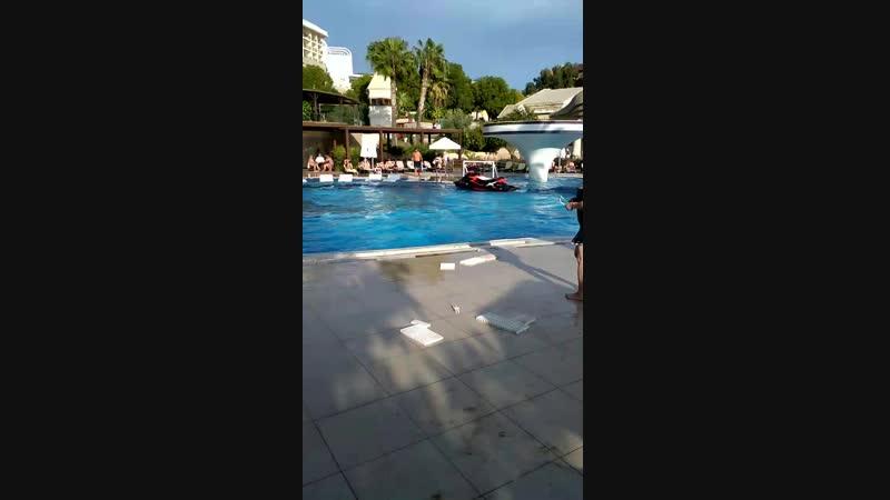 Рожденные плавать,расступитесь,я взлетаю!