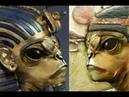 Главный артефакт фараона. Египетские фараоны были гибридами инопланетян.