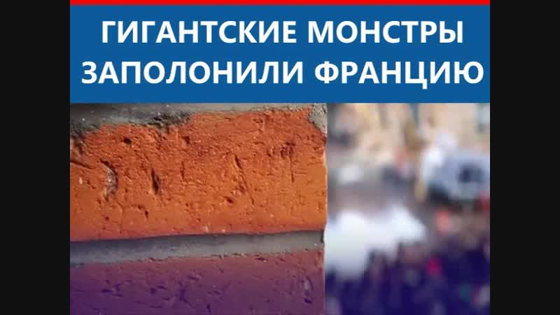 ГИГАНТСКИЕ МОНСТРЫ ЗАПОЛОНИЛИ ФРАНЦИЮ
