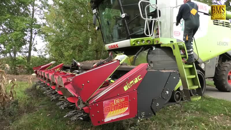 Körnermais ernten - Mähdrescher Lexion Claas 670 TERRA TRAC - combine harvester 2018 LU Behr
