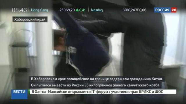 Новости на Россия 24 • На границе задержали китайца с 35 килограммами камчатского краба