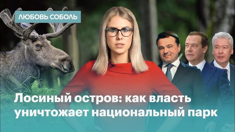 Медведев Воробьев Ротенберг и Собянин уничтожают Лосиный остров