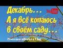 Прованс А я все чищу свой сад по см и блин за 2евро provenceallochka vlog