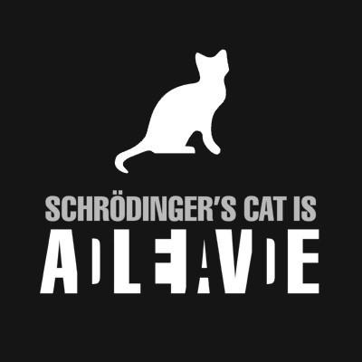 Кот Шредингера Кот Шредингера это мыслительный эксперимент, предложенный австрийским физиком теоретиком Эрвином Шредингером. Этот талантливый ученый получил в 1933 г. Нобелевскую премию по