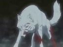 Волчий Дождь Белый Волк