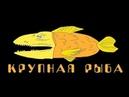 Крупная Рыба 23. Артур Мурадян - Взломай денежный код. Взломай его полностью.
