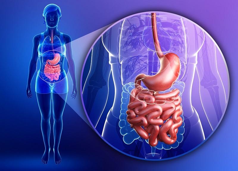 Надо ли чистить кишечник - клиническое исследование