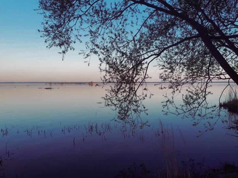 Дарья Петрова | Ростов
