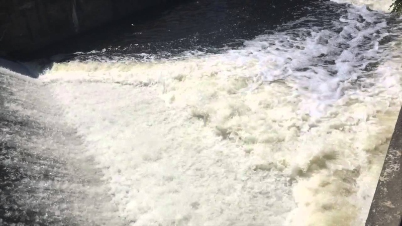 Плывите к успеху против течения