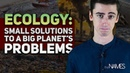 Ecology: Small Solutions to a Big Planet's Problems. The Names