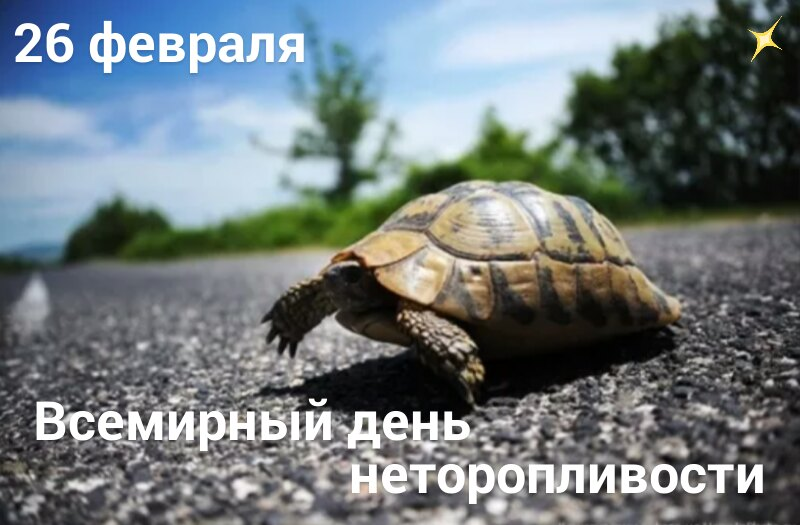 https://pp.userapi.com/c851032/v851032129/c82bd/LfkOW8WMEng.jpg