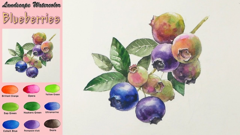 Blueberry - Drawing Fruit Landscape Watercolor.(wet-in-wet. Arches rough) NAMIL ART