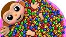 Aprende Colores Con Bebé Mono Fútbol Pelota Baño Tiempo Dedo Familia Canción