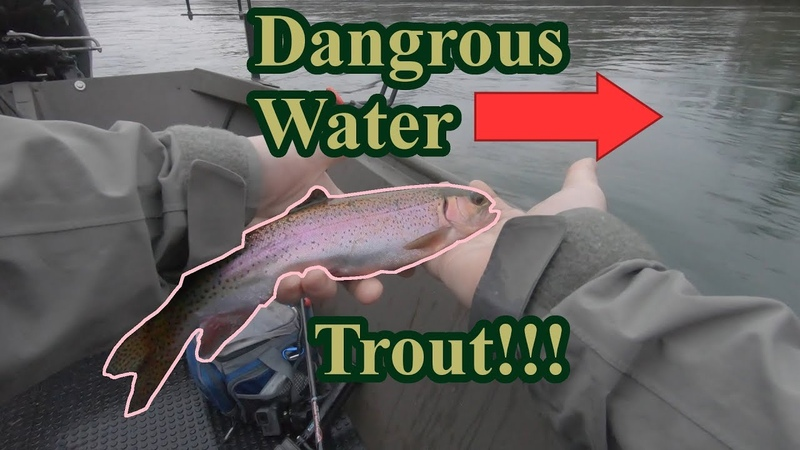 FAST water Trout fishing in the RAIN