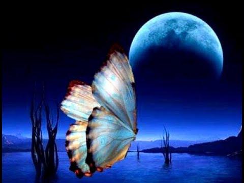 Бабочка, открытый мастер класс по живописи с Татьяной Букреевой
