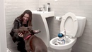 Introducing Giddel Toilet Cleaning Robot