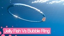 Jellyfish goes for a spin after wrapping itself around bubble ring