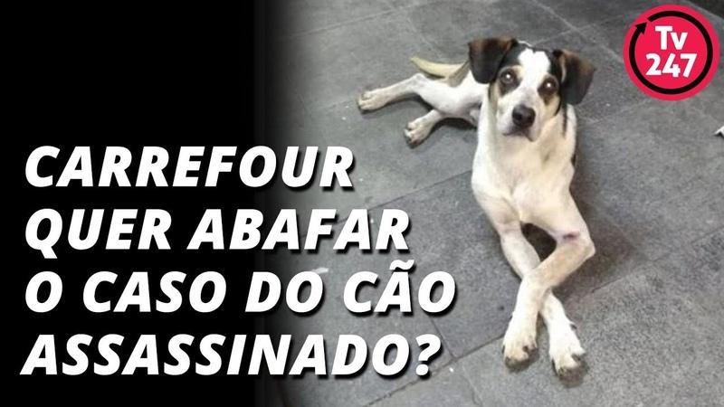 Carrefour quer abafar o caso do cão assassinado
