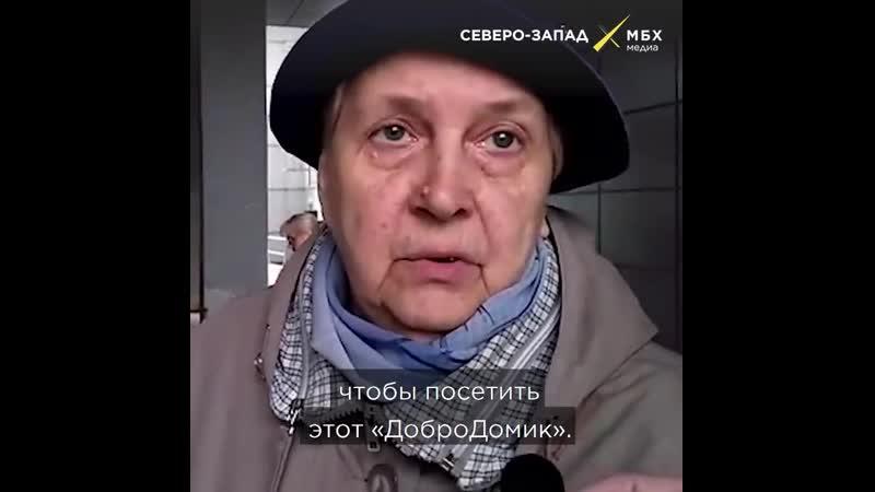 Владельцам ДоброДомика в Петербурге грозит штраф