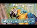 Creating Depth in Your Artwork Macaws in the Sunshine