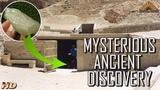 Something Dramatic Happened in the Egyptian Desert 29 Million Years Ago!